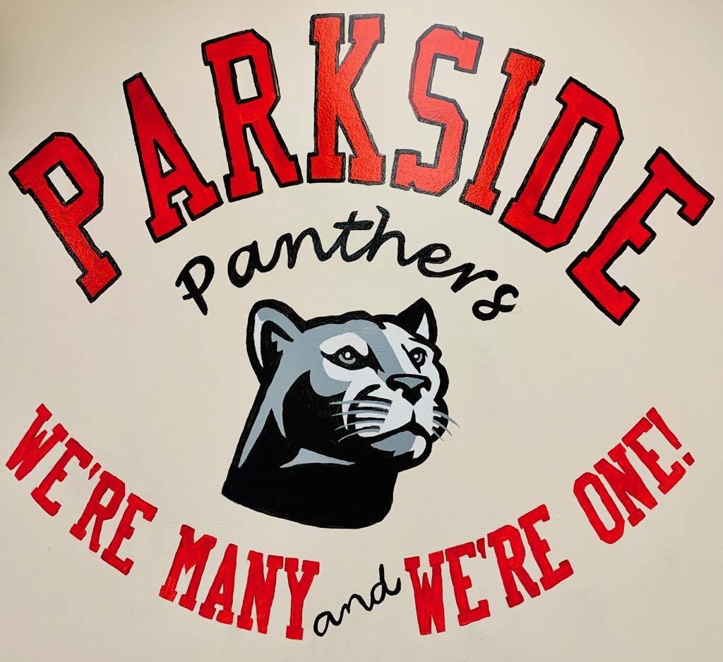 Panthers Art